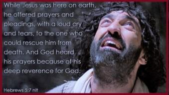 Praying Tears3